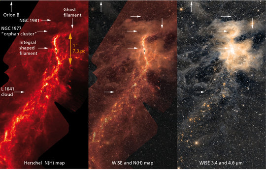 Birthplace of the suns: The integral-shaped filament, the two star clusters above the filament, and cloud L1641 in the south can be seen on these images of the Orion A star formation region. The picture on the left shows a density map compiled with data from the Herschel space telescope, the one on the right an infrared image taken by the WISE space telescope. The photo in the centre is a combination of both images.