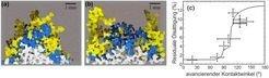 <strong>Abb. 2: </strong>Röntgen-Mikrotomographie von Invasionsfronten einer wässrigen Phase, die eine Ölphase aus einer Kugelschüttung verdrängt. Ver
