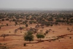 In the past 20 years, the Sahel has become greener because the West African monsoon brings more rain in the sub-Saharan region. A key reason for this is the strong Mediterranean warming as climate researchers from Hamburg have discovered.