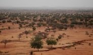 Warming of the Mediterranean causes stronger rainfall in the Sahel.