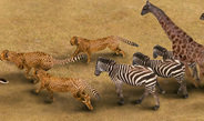 New software makes it possible to generate animated three-dimensional figures of animals from short videos