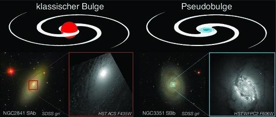 Klassische Bulges (links) ähneln elliptischen Galaxien: sie sind strukturlos, stark zum Zentrum konzentriert, relativ wenig abgeflacht, rotieren langs