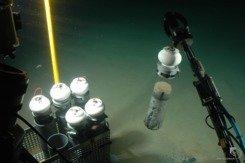 Das Tauchboot Jago nimmt Sedimentproben am Meeresboden. Sauerstoff dringt nur bis knapp unter die Oberfläche ein, die schwarzen und grauen Schichten s