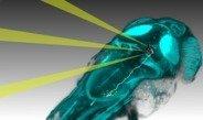 Neue Methode kann Verhalten von Zebrafischen auf Netzwerkaktivität im Gehirn zurückführen