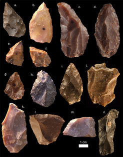 Some of the Middle Stone Age stone tools from Jebel Irhoud (Morocco). Pointed forms such as a-i are common in the assemblage. Also characteristic are the Levellois prepared core flakes (j-k).