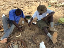 Cyprian Nyete (left) and Isaiah Nengo (right) excavating Alesi, using fine picks and brushes, as well as a hardener to protect the fossil bone.