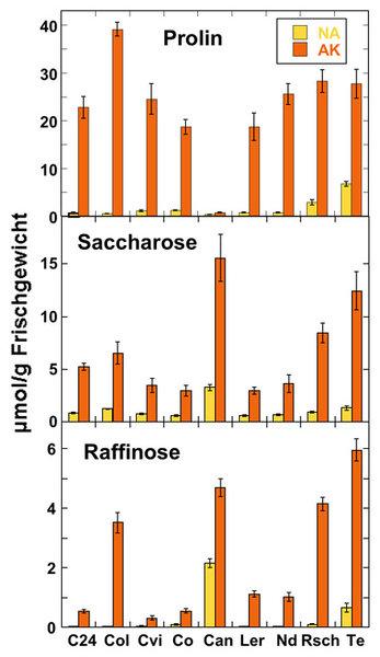 Gehalte der Aminosäure Prolin und der Zucker Saccharose und Raffinose in Blättern von verschiedenen Akzessionen von Arabidopsis thaliana vor (NA) und