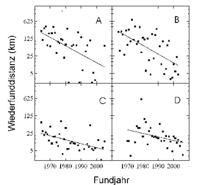 Entfernungen zwischen dem Ort der Beringung zur Brutzeit und dem Ort des Wiederfundes im Winter bei Blaumeise (A), Kohlmeise (B), Waldkauz (C) und Ste