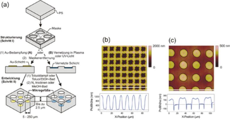 (a) Mikrostrukturierungsprozess für Polystyrol; (b) quadratische Löcher, mit einer Tiefe von circa 1250 nm, erstellt mit einer Lochmaske mit Löchern v