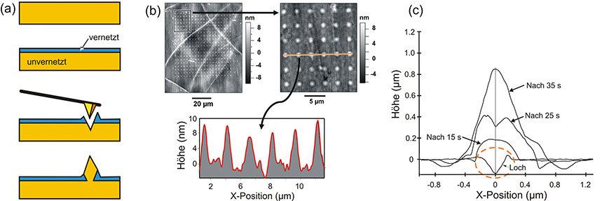 (a) Nanostrukturierungsprozess für Polystyrolplatten (von oben nach unten): Oberfläche wird vernetzt, vernetzte Schicht wird mit einer pyramidalen AFM