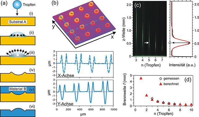 Mikrostrukturierung  einer Polystyrolplatte zur Herstellung von Mikrolinsen. (a) Methode zur Herstellung von konkaven und konvexen Linsen mittels Lösu