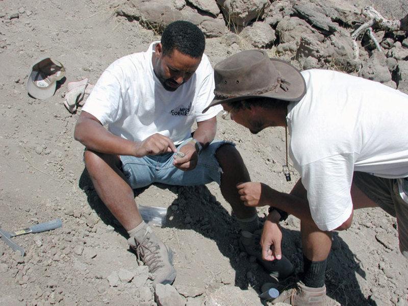Dr. Zeresenay Alemseged und der Geologe Dr. Jonathan Wynn diskutieren einen neu entdeckten Knochen des Kinderskeletts.