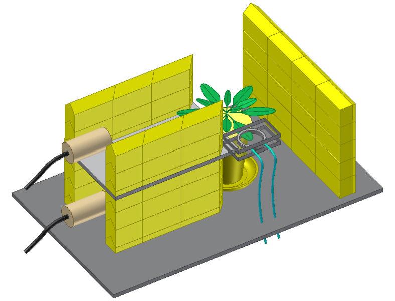 Mit Hilfe eines radioaktiven, kurzlebigen Isotops des Kohlenstoffs (11C - Halbwertszeit 20,4 Minuten) wurden Transportvorgänge von Zuckern in unveränd
