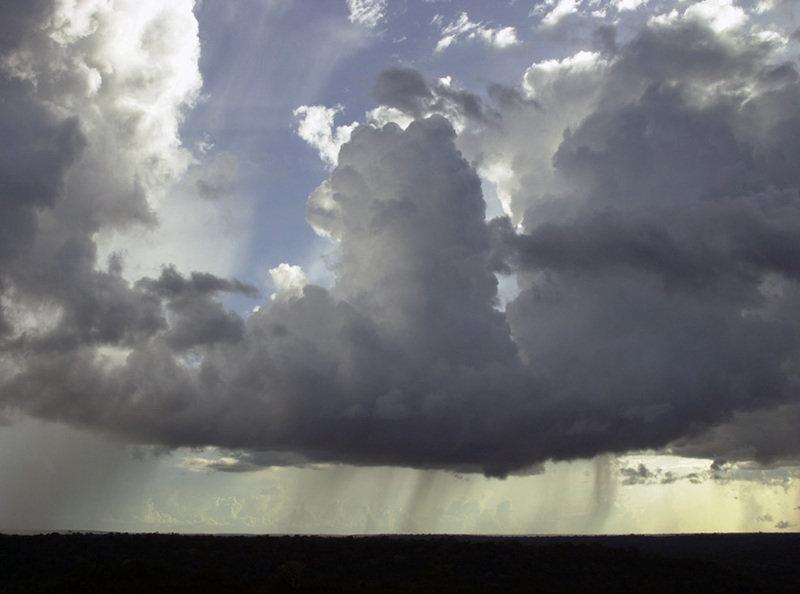 Ein geschlossener Bioreaktor: Das Amazonas-Ökosystem produziert organische Aerosolpartikel, die als Kondensationskerne für Wasserdampf dienen. Sie erm