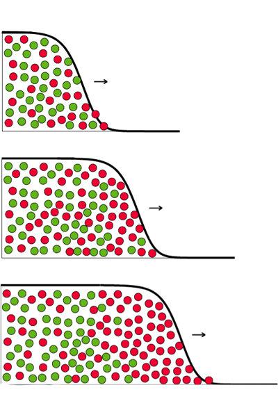 Mutanten im Vormarsch: Als Wellenfront breitet sich eine genetische Variante, symbolisiert durch die roten Punkte aus. In dem abgebildeten Fall bringt