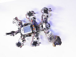 Following the principle of chaos control, the robot produces regular leg movements when walking normally. In addition, it can use the uncontrolled cha