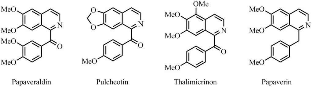 Abb. 3: Ausgewählte Beispiele der synthetisierten Naturprodukte