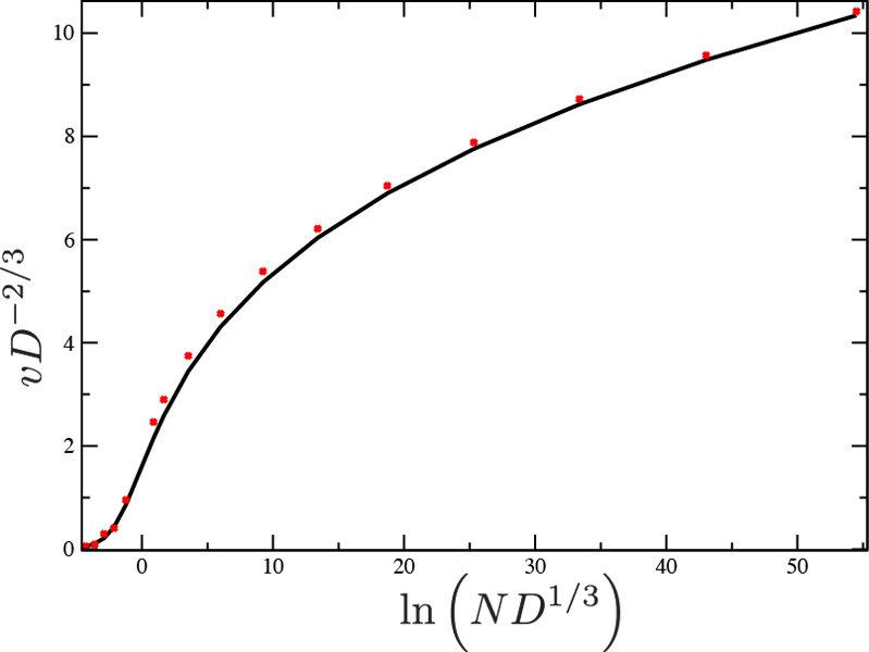 Abb. 2: Die Beziehung zwischen der skalierten Wellengeschwindigkeit und der skalierten Populationsgröße zum einen numerisch bestimmt aus dem exakt lös