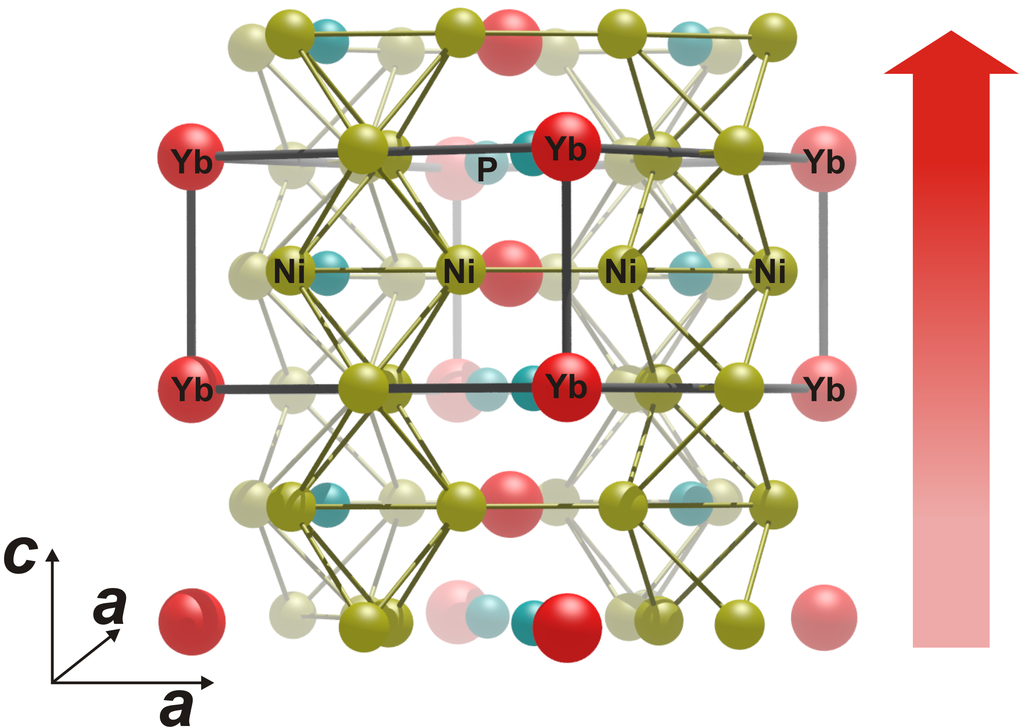 The complex crystalline structure of the ytterbium nickel phosphide compound YbNi4P2 shows how the researchers in Dresden shifted the temperature scale of the transition to ferromagnetism downwards, so to speak. The chains of ytterbium atoms form perfectly linearly in the direction of the red arrow, almost like one-dimensional ferromagnets. These chains mutually feel the magnetism of their neighbouring chains, but only weakly. For this reason, they do not manage to order themselves collectively into a bulk ferromagnet at higher temperatures. Only close to absolute zero, where the disruptive thermal agitation of all the atoms nearly freezes, can the ferromagnetic phase transition take place.