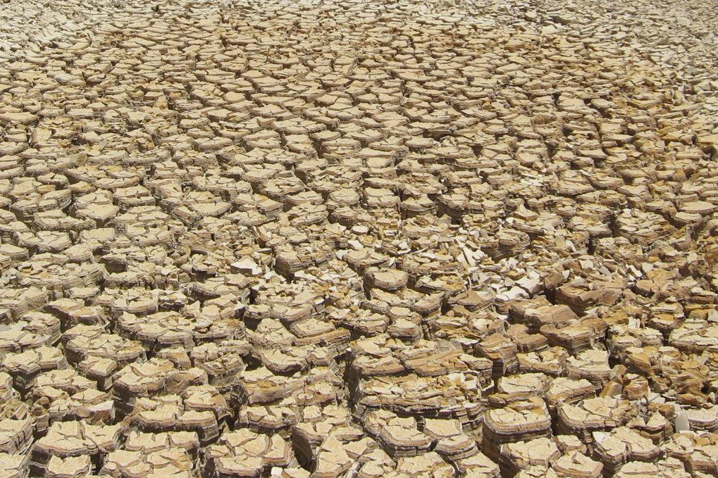 Ein Extrem zieht das andere nach sich: Lange Dürreperioden wie hier in Griechenland bewirken, dass ein terrestrisches Ökosystem deutlich wen