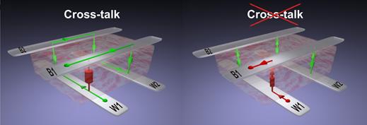 <strong>Abb. 1:</strong> Links: Ein 4-Bit-Speicherbereich (Crossbar-Feld), der von einem hohen (rot) zu einem niedrigen (grün) Widerstand geschal