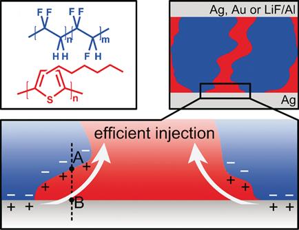 <strong>Abb. 2:</strong> Chemische Strukturen des Halbleiters P3HT (rot) und des ferroelektrischen Polymers P(VDF-TrFE) [oben links]. Schematische Dar