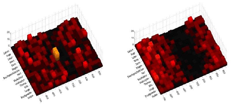 Abb. 3: Ausprägung des Bindungsmotivs des Transkriptionsfaktors MEF2 in humanen Promotoren mit niedrigem (links) und hohem (rechts) CpG-Gehalt, aufget