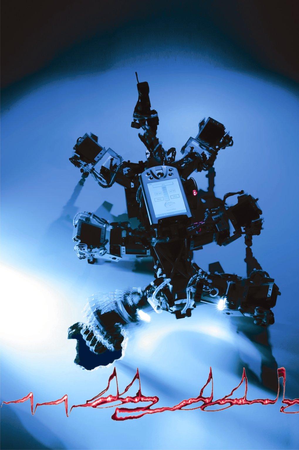 Abb. 3: Intelligente Dynamische Systeme: Neuro-inspirierte Nutzung von Instabilitäten macht Roboter dank adaptiver Chaos-Kontrolle selbständiger.