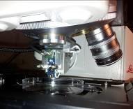 Abb. 2: Miniatur-CFM an einem Leica Konfokal-Mikroskop. Mit diesem System können Genexpression und mechanische Kräfte in den Zellen gleichzeitig gemes