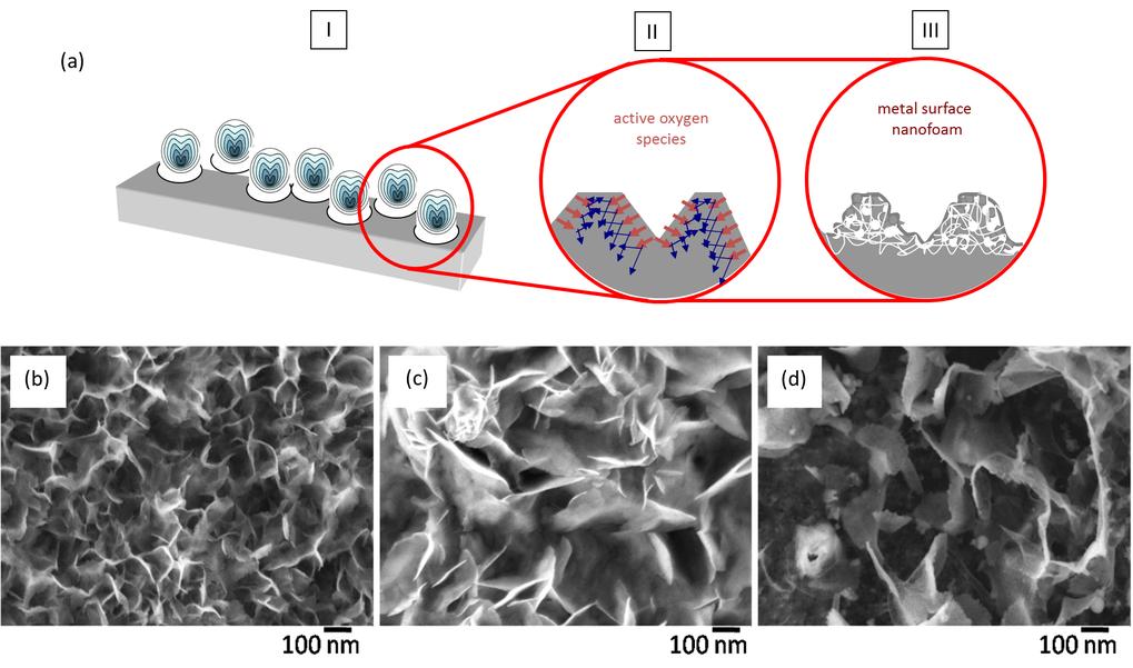 Abb. 1: Oben: Schematische Darstellung der Porenbildung durch Ultraschall bei Metallen. Unten: Oberflächen verschiedener Metalle (Elektronenmikroskopa