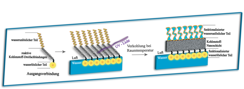 A self-organising carbon nanolayer: Chain molecules with one water-soluble and one insoluble end self organise on a water surface like the bristles in