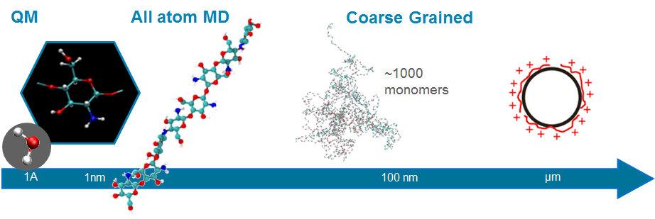 Abb. 1: Überblick über die relevanten Größenordnungen der Polysaccharid-Systeme.