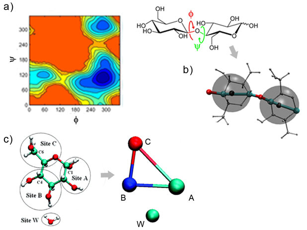 Abb. 3: Coarse-Graining-Verfahren für große Polysaccharide. a) Freie-Energie-Karten für die Torsionswinkelφ und ψ, die flexibelsten Freiheitsgrade in