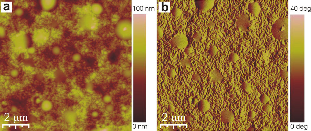 <strong>Abb. 2:</strong> Rasterkraftmikroskopie Bilder der Topographie (a) und der Phase (b) einer mittels Rotationsbeschichtung hergestellten Mischun