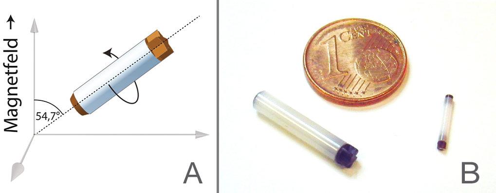 <strong>Abb. 1:</strong> (<strong>A</strong>) Mittels kernmagnetischer Resonanzspektroskopie (NMR) können feste Proteine in schnell um die eigene Läng
