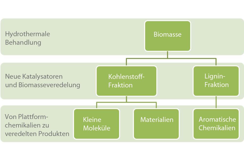 Abb. 1: Schema Bioraffinerie