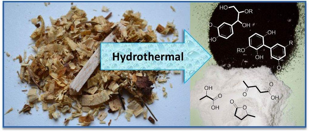 Abb. 2: Schematische Darstellung der Zerlegung von Rohbiomasse (hier Holz) zu einem Raffinat. Dieses besteht aus Milchsäure, höheren Hydroxysäuren und