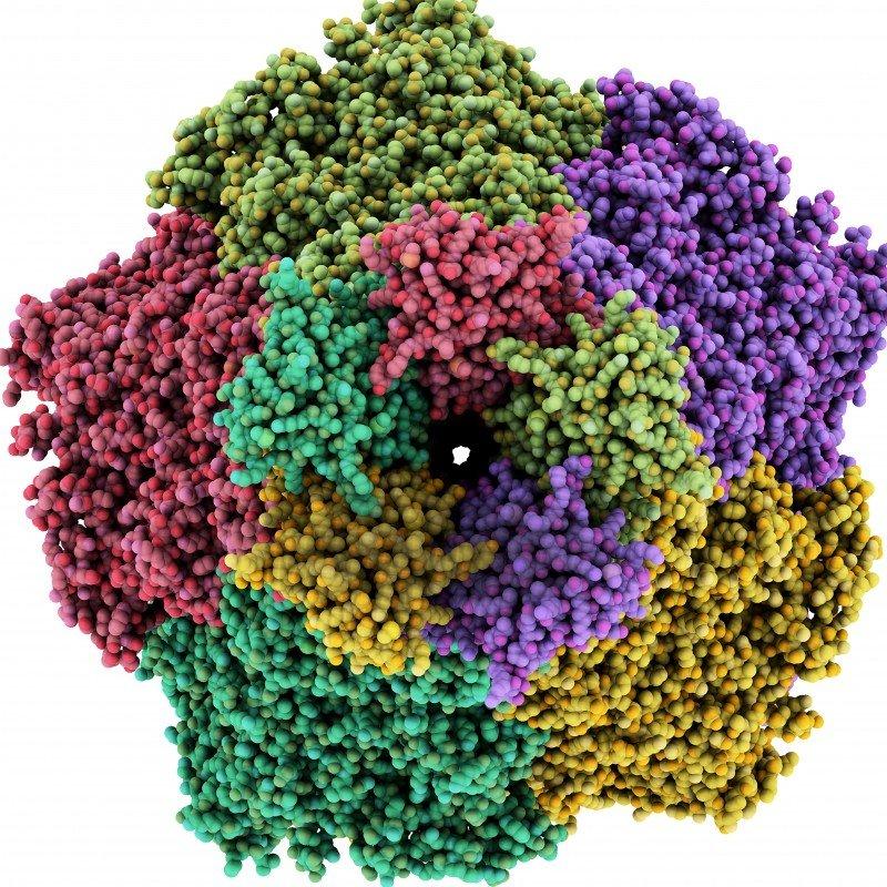 Giftspritze im Nanoformat