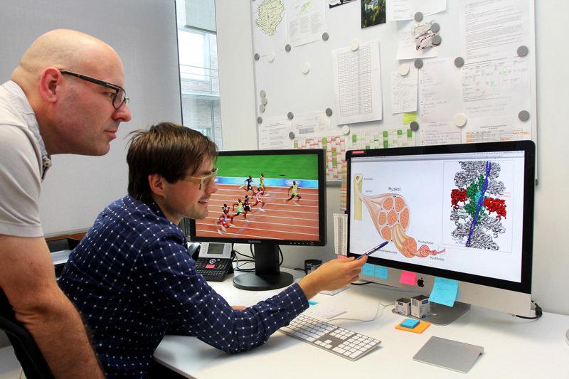 Auf den Bildern ihres Elektronenmikroskops können Stefan Raunser (links) und Julian von der Ecken selbst winzigste Details im Zusammenspiel der Muskel