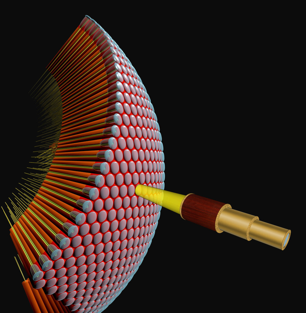 Neuron unites two theoretical models on motion detection