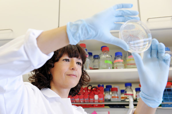 Emmanuelle Charpentier: An artist in gene editing