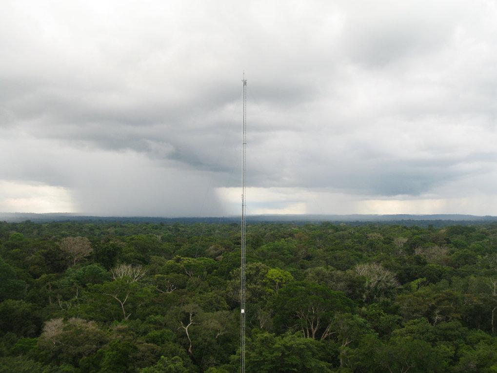 Regenwolken über dem Amazonas: Der Abwind von Niederschlag transportiert die Vorläufer der Wolkenkeime aus großen Höhen in die Luftschicht, in der Wol
