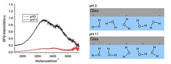 Abb. 1: SFG-Spektren von Wasser an geladenen Glasplättchen. Die rechte Abbildung zeigt ein molekulares Bild der möglichen Wasserorientierung an der Gr