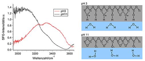 <p><strong>Abb. 2: </strong>SFG-Spektren von saurem und basischem Wasser an der Grenzfläche mit Titandioxid. Rechts ist die räumliche Orientierung des