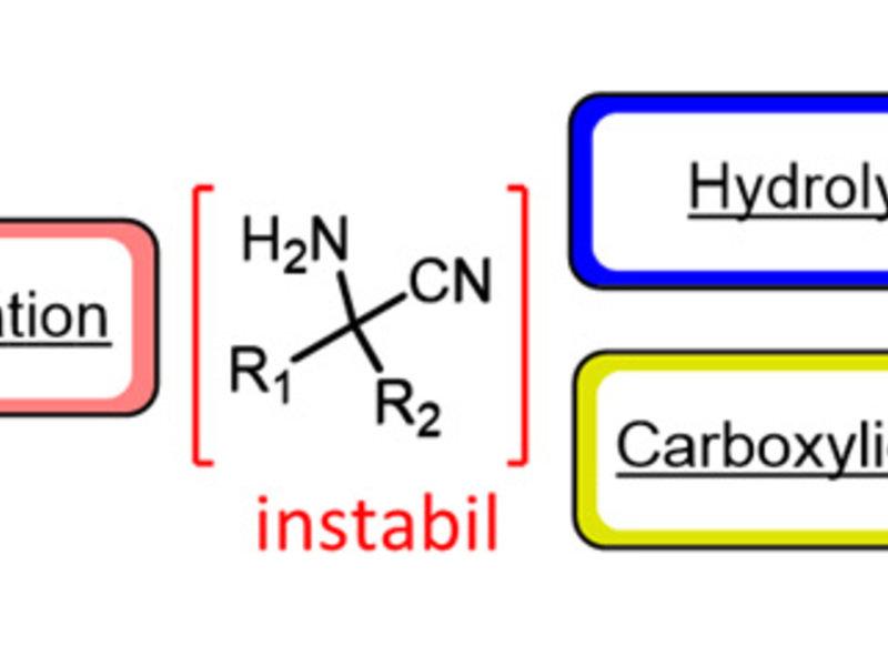 Abb. 2: Herstellung komplexer Verbindungen durch die Kopplung verschiedener Reaktionsmodule
