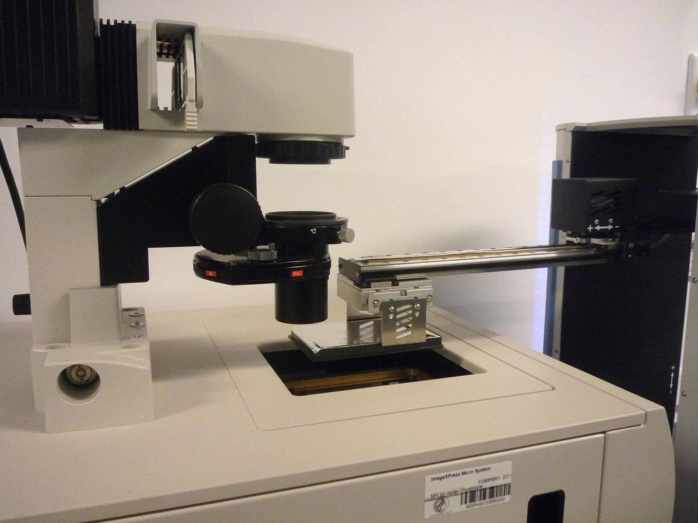 Abb. 3: Eine Zellplatte wird mit einem Greifer in das automatische Mikroskop überführt. Die Mikroskop-Software steuert Anzahl und Lage der aufzunehmen