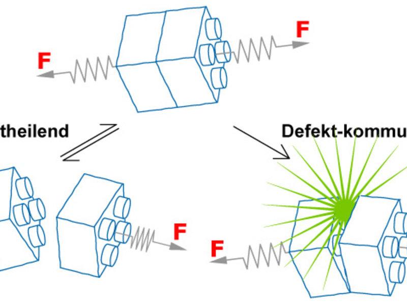 Abb. 2: Mechanoresponsive Molekülbausteine zeigen eine definierte Reaktion auf eine von außen angelegte Kraft F. Selbstheilende Bausteine werden in Br