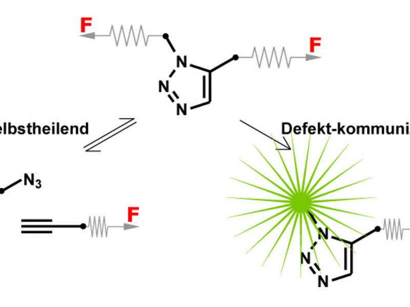 Abb. 3: Möglichkeiten der Verwendung von Triazol-Ringen als mechanoresponsive Molekülbausteine.