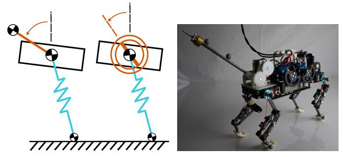 <p><strong>Abb. 3:</strong> Links: Vereinfachtes Robotermodell mit Schwanz oder Schwungrad. Rechts: Cheetah-cub mit planarer Schwanzkonstruktion.</p>
