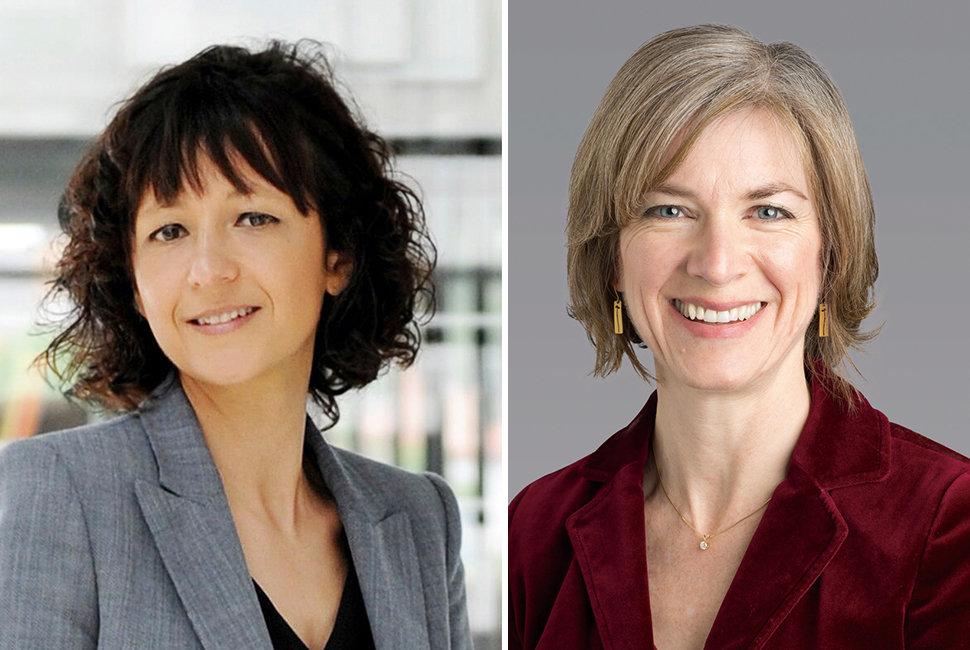 Emmanuelle Charpentier erhält den Japan-Preis in den Lebenswissenschaften gemeinsam mit Jennifer Doudna von der University of California, Berkeley.